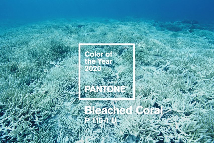 Will Bleached Coral be the Pantone color 2020?
